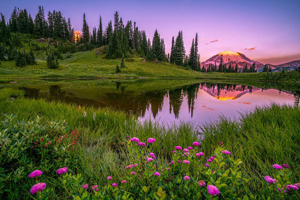 Reflection of Mount Rainer in Tipsoo Lake at Sunrise